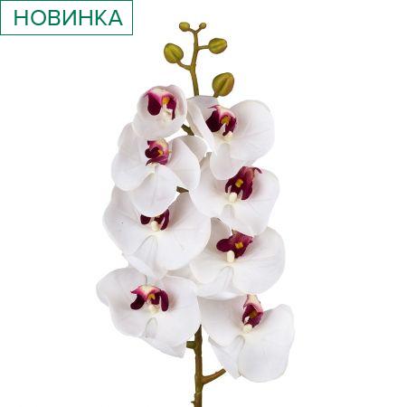 401/0012-20L Орхидея искусственная латекс h-99см бело-розовая (8г+5б)