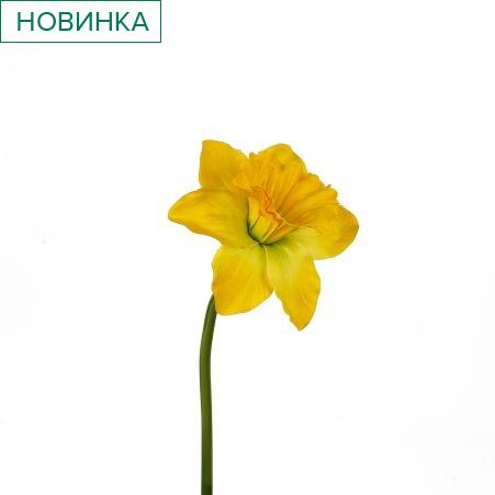 401/0410-3А Нарцисс искусственный одиночный  h 50см желтый