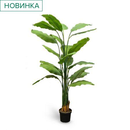 П180/356 Куст Банана зеленый (латекс) h-180см