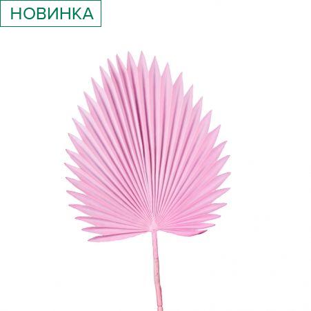 7143/0030-8/1 Лист Веерной пальмы искусственный, розовый, h 88 см (35+53)