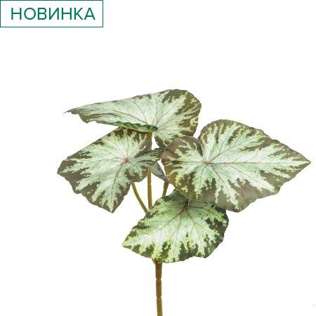7143/0175-8/9-1 Бегония (латекс) h=25см (15+10) св.-зеленая