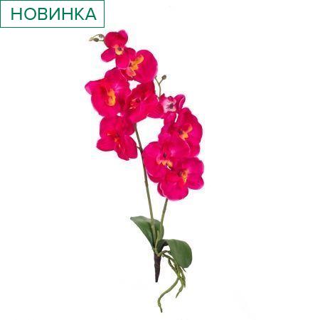 7141/9167-4/15А Орхидея с корнем и листом *2в;9г(малин)