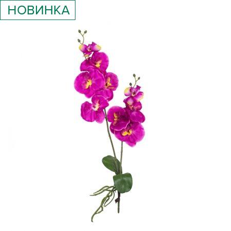 7141/9167-4/6А Орхидея с корнем и листом *2в;9г(фуксия)