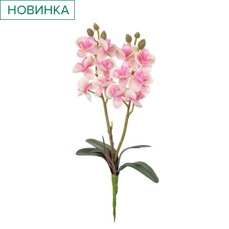 7141/0455/1 Орхидея мини *2  h-25см (розов.)