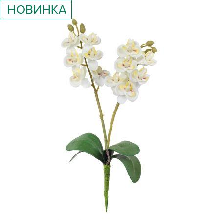7141/0455/23 Орхидея мини *2  h-25см (белая)