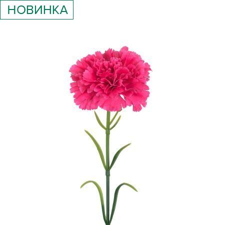 7141/9149-2/15Р Гвоздика (малиновая) h 50см