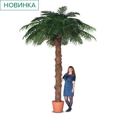 П350/49-6(з) пальма с плодами кокоса h-350см, d-260см
