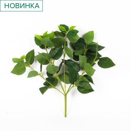 7143/9119-2 Колеус (зеленый)