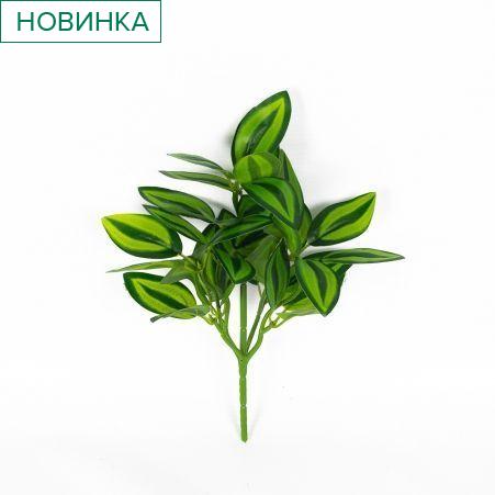 7143/0322-1 Традесканция (зеленая) мелк.