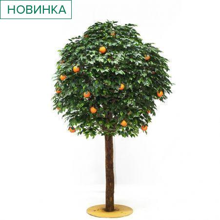 260/ШК/34(з.) Апельсиновое дерево (латекс) h260 см