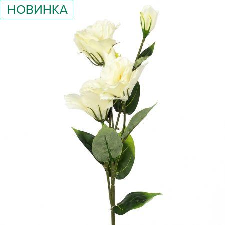 7141/10523-23 Эустома *5г h72см (белая)(Ф)