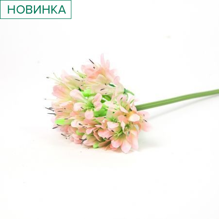 401/5017-5C Аллиум h70см (бледно-розовый)