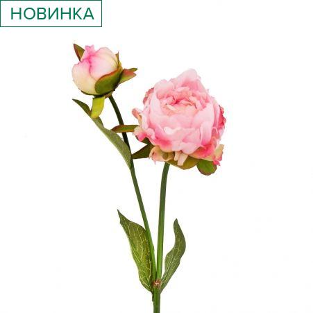 401/0234-1В Пион ветка h56см (розовый)(1гол+1бутон)