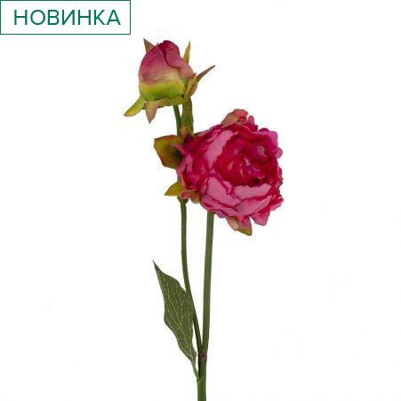 401/0234-15В Пион ветка h56см (малиновый)(1гол+1бутон)