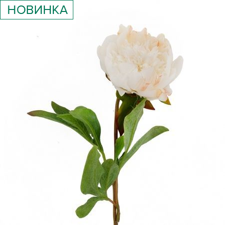 401/0233-23В Пион h50см (белый)