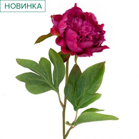 401/0233-28В Пион h50см (пурпурный)