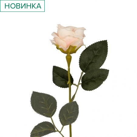 401/0048-5В Роза h56см (бледно-розовая)