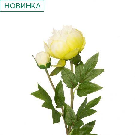 401/0066-19В Пион ветка h67см (бело-зеленый)(1гол+1бутон)