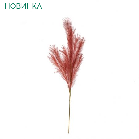 403/9268-11C Трава пампасная (пьяная вишня) h116 см