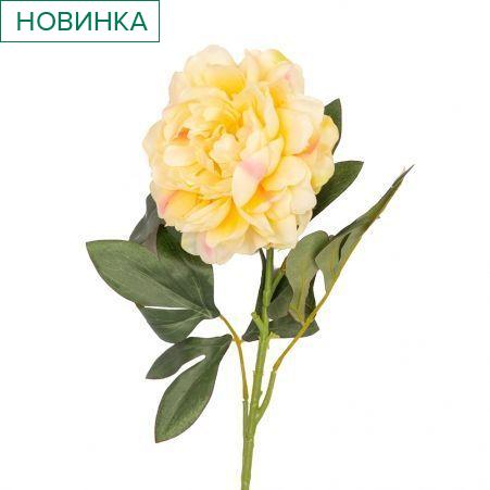 7141/0483-4/3Р Пион *1 (желтый) h78см
