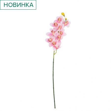 7141/9236-1/20 Орхидея Цимбидиум латекс(бело-розовый) 92см (9г)
