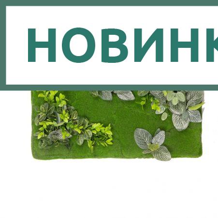 ФК03/4(з) Фитокартина зелень микс (70*h40)