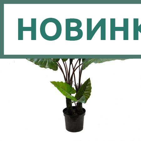 140/К/402 (Promo) Куст колоказии h140см(латекс)