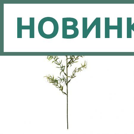 403/0300В Ветка Аспарагуса декоративная hсм (12шт/уп)