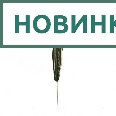 403/0998В Лист драцены (12шт/уп)
