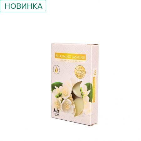 Свеча арома, гильза (6 шт.) Р15-169, kwitnacy jasmin (жасмин)