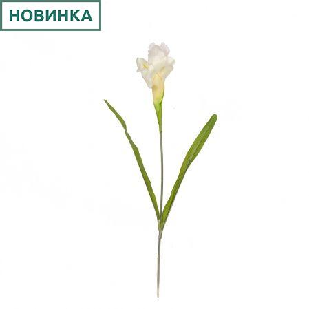 401/0192-23В Ирис h60см (белый)