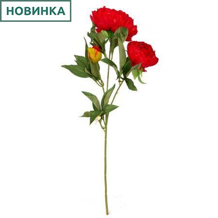 7141/9191-5/2 Пион 2гол. 1 бут.d12; h60см (красный)