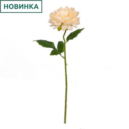 7141/9149-9/13 Георгин *1г d12; h50см (персиковый)
