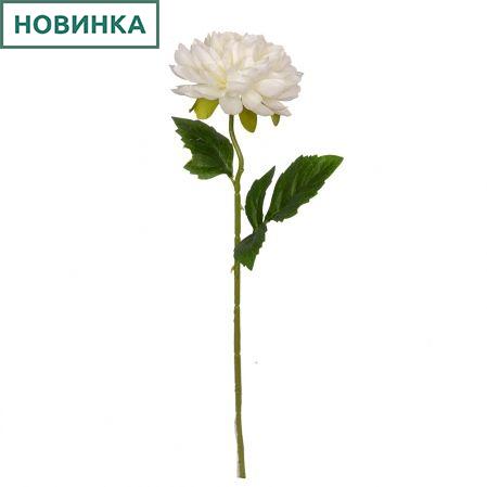 7141/9149-9/23 Георгин *1г d12;h50см (белый)