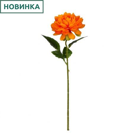 7141/9149-9/3 Георгин *1г d12; h50см (светло оранжевый)