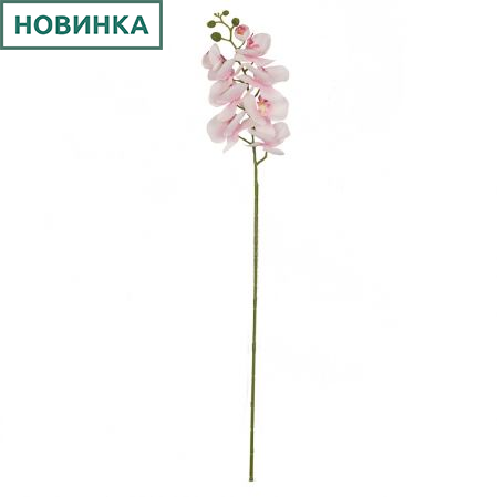 401/0008-20L Орхидея сатиновая h95см (бело-розовая)