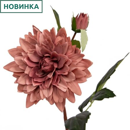 401/0093-20В Георгин ветка d15; h60см (пыльно розовый)(1г.1б.)
