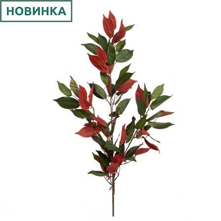 7143/0760-22 Ветка Фикуса двухцвентная (зелено-бордовая) h65см