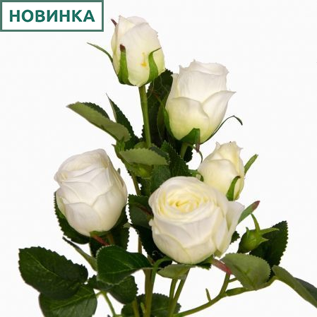 401/0173-23L Роза ветка d4; h63см (белый) *5б