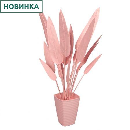 К75*3-2 Стрелиция куст (розовая) h75см (силикон) в интерьерном кашпо d17см