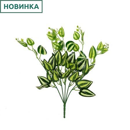 7143/А2790-113 Традесканция куст *5 зелено-желт. h27см(1338)