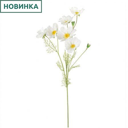 7141/А2785-02/23 Космея d10; h85см (5г+3бут)(белый)