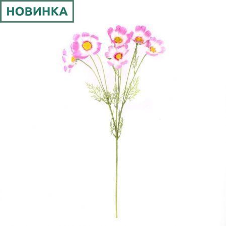 7141/А2785-02/5 Космея d10; h85см (5г+3бут)(бел.-розовый)