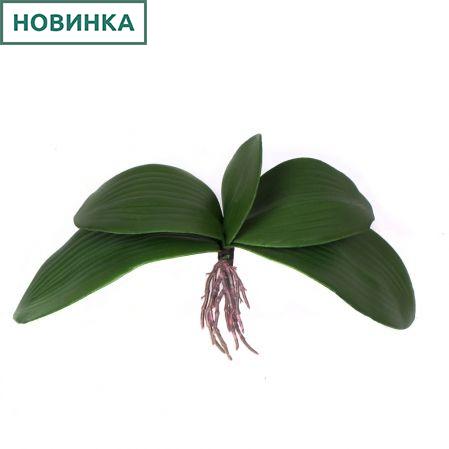 7143/А2777-34 Листья для орхидеи большие