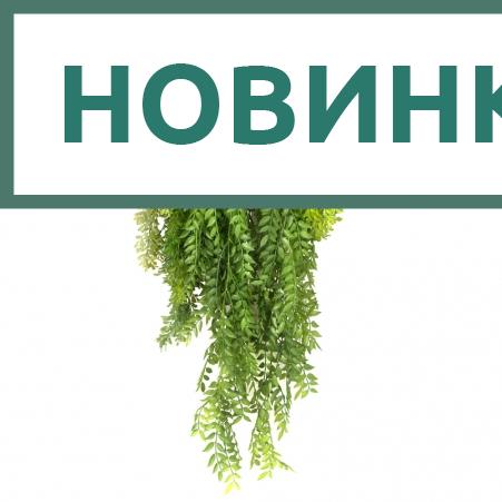 КС115(з.) Микс ампельных растений в горшке d15см (свес 120см)