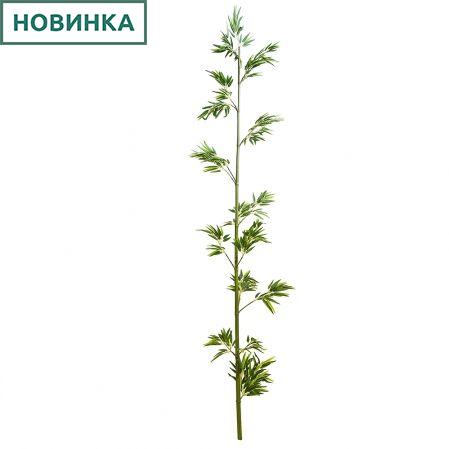 300/Б(з) Бамбук h300см(латекс)