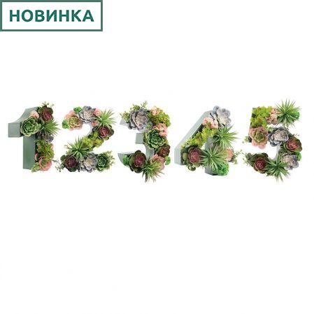 Логотип 1,2,3,4,5 с суккулентами (143*h27см)