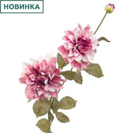 7141/А2790-03/16 Георгин бело-сиренев. h115см(2г+1б)(480)