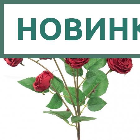 7141/А2790-01/2 Роза пионовидная красная h70см(5г+1б)(294)