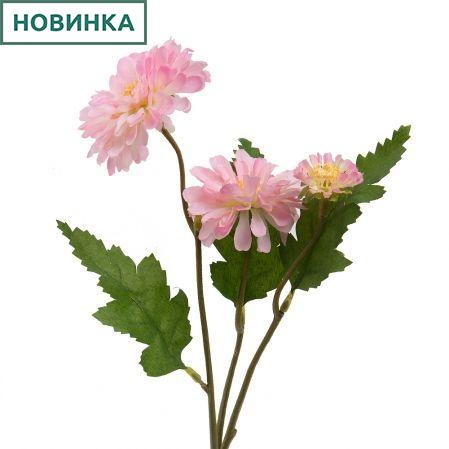 7141/А2790-013/1 Цинния розов. h40см(2г+1бут)(865)
